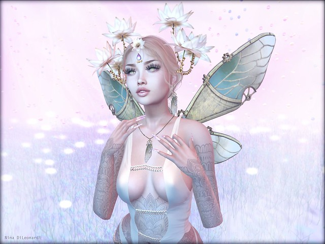 - Lotus Fairy -