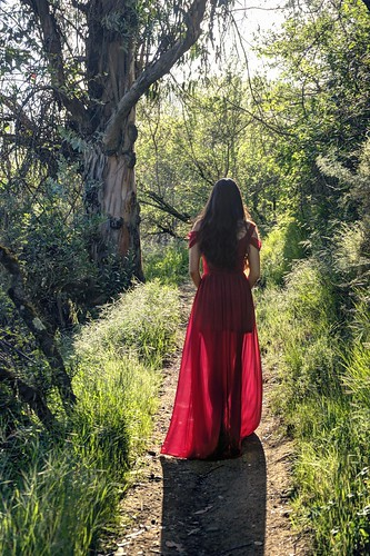 cupertino california siliconvalley usa sanfranciscobay sanfranciscobayarea southbay stevenscreektonylooktrail stevenscreek park woman back silhouette dress red reddress walk path trail dream nature outdoor backlight sunset sony sonya7r a7r a7rii a7rmii alpha7rmii ilce7rm2 fullframe fe2870mmf3556oss 2xp raw photomatix hdr qualityhdr qualityhdrphotography fav100 womaninred model