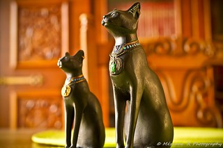 Chats ( France - Nord )