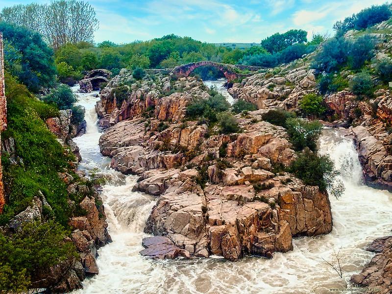 El Piélago de Linares