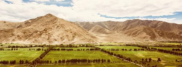 雍布拉康旁,西藏第一块耕地(Farm Land besides Yumbulhakang Palace)