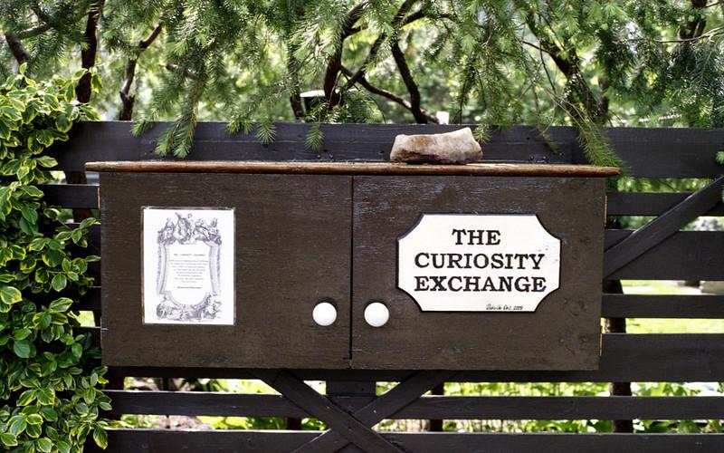 The Curiosity Exchange June 1