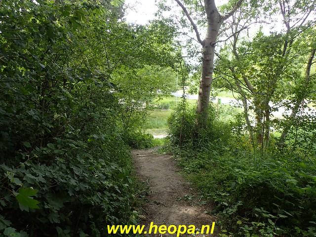 2020-06-03     Hollandse-Hout -    Klokbekerweg    (91)