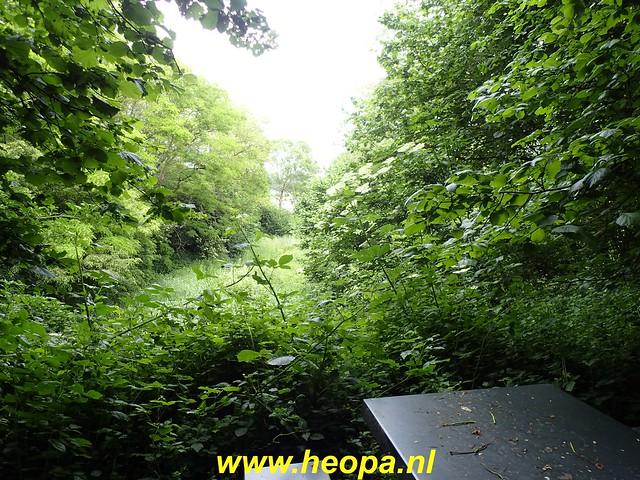 2020-06-03     Hollandse-Hout -    Klokbekerweg    (89)