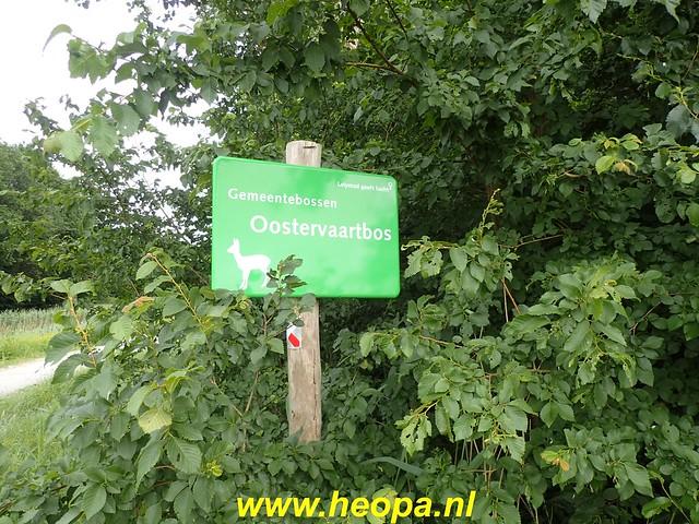2020-06-03     Hollandse-Hout -    Klokbekerweg    (85)