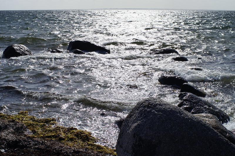 Strand-foraar-2020 (11)