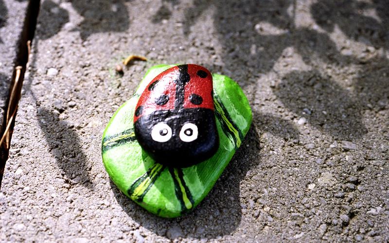 Laybug Rock