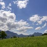 1. Juuni 2020 - 12:15 - Samerberg Bavaria