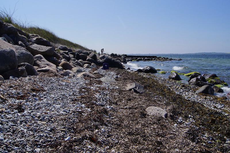 Strand-foraar-2020 (10)
