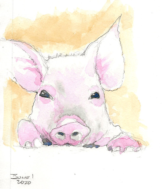 Pig - for Fun