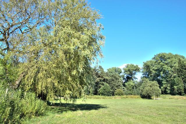 Scene at Halsam Park, Preston