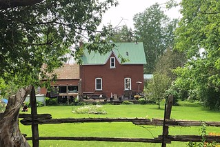 Backyard in Prospect, near Franktown