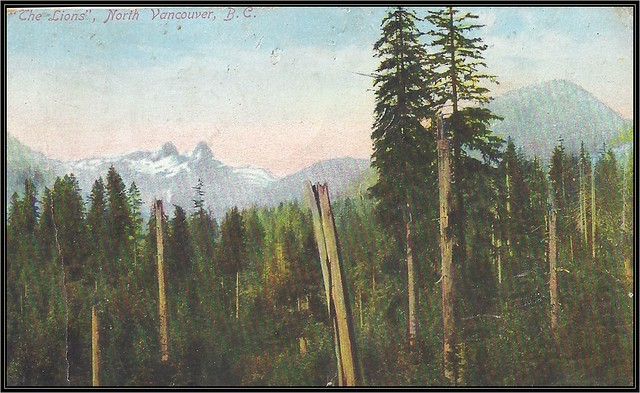 c. 1910 Novelty Post Card Company - View of