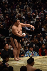 日本大相撲トーナメント第四十四回大会 - 44th Grand Sumo Tournament