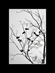 PicsArt_06-05-03.20.02