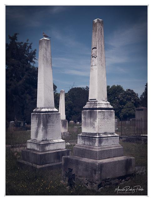 City cemetery 2020