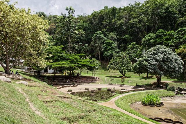 Jardin botanique de la reine Sirikit (121 sur 138)