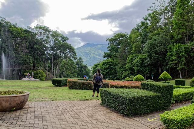 Jardin botanique de la reine Sirikit (108 sur 138)