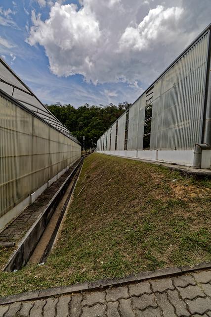 Jardin botanique de la reine Sirikit (73 sur 138)