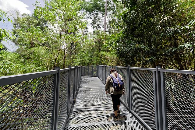 Jardin botanique de la reine Sirikit (23 sur 138)
