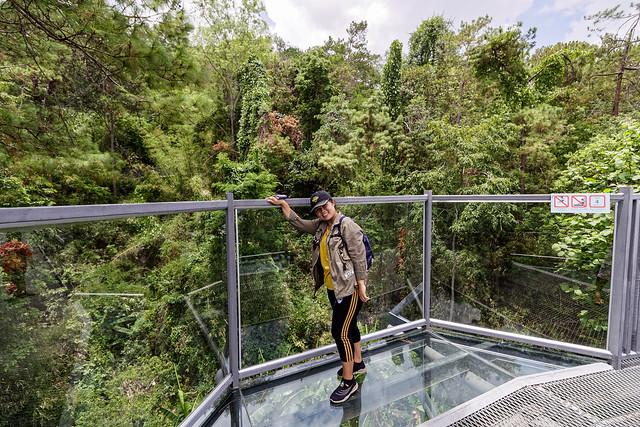 Jardin botanique de la reine Sirikit (12 sur 138)