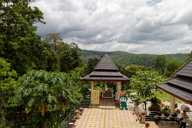 Jardin botanique de la reine Sirikit (3 sur 138)