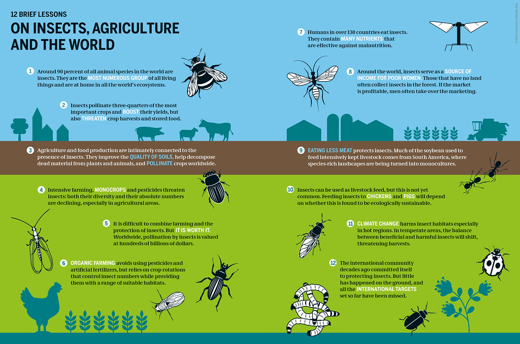 Insect Atlas 2020: ON INSECTS, AGRICULTURE AND THE WORLD