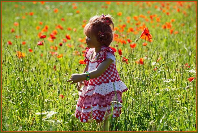 🌼💖🌹🌼👄🌼🌹🍨💖🌼 Sooo viele Mohnblumen ...