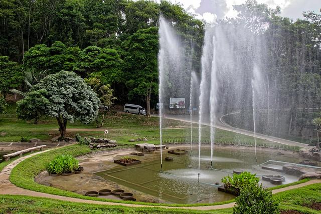 Jardin botanique de la reine Sirikit (117 sur 138)
