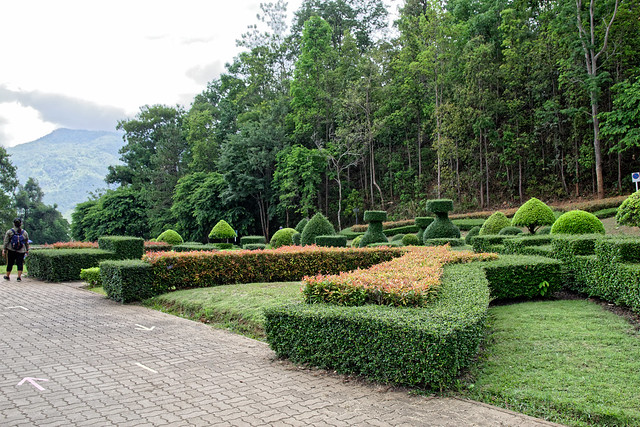 Jardin botanique de la reine Sirikit (107 sur 138)