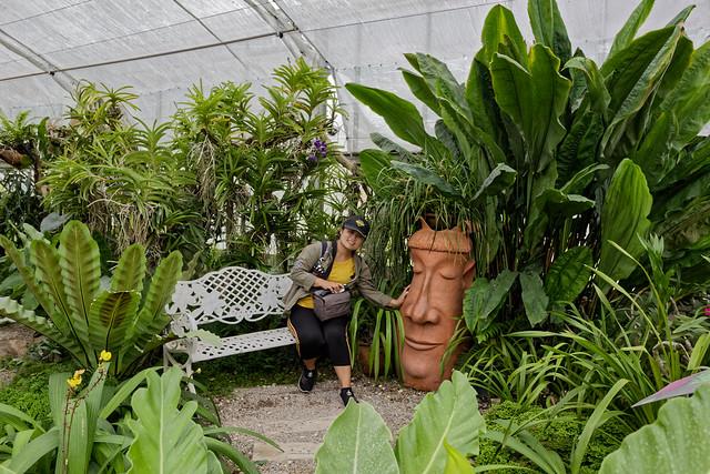 Jardin botanique de la reine Sirikit (92 sur 138)