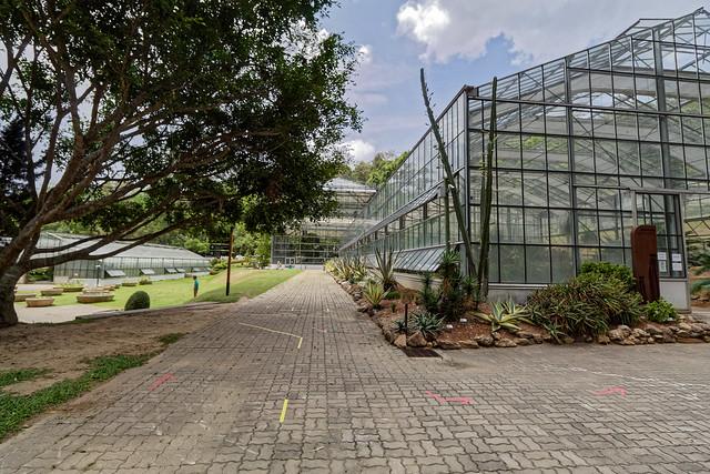Jardin botanique de la reine Sirikit (66 sur 138)