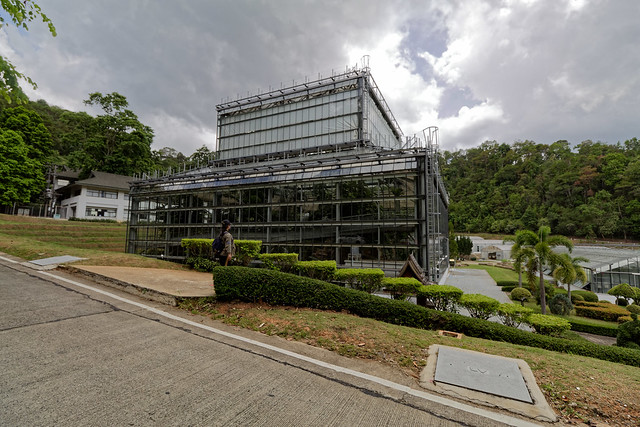 Jardin botanique de la reine Sirikit (44 sur 138)
