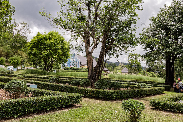 Jardin botanique de la reine Sirikit (41 sur 138)