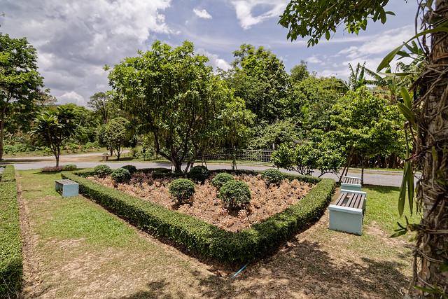 Jardin botanique de la reine Sirikit (38 sur 138)