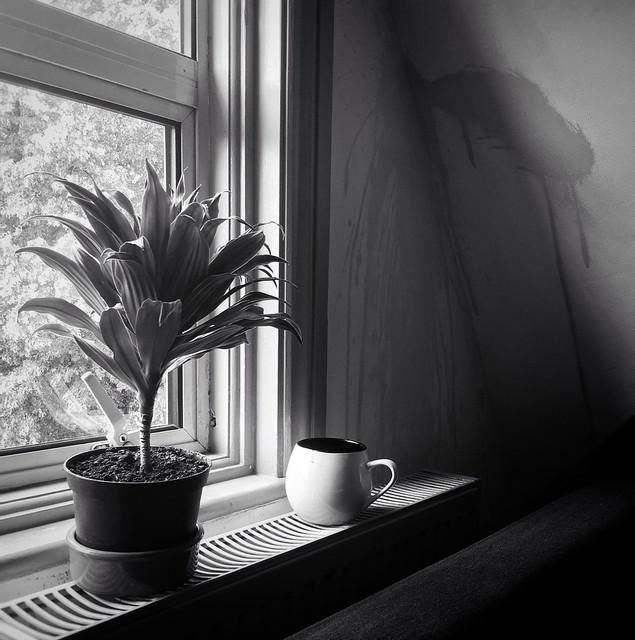 Stains & Still life