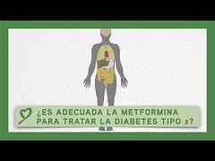 ¿Es adecuada la METFORMINA para tratar la diabetes tipo 2?
