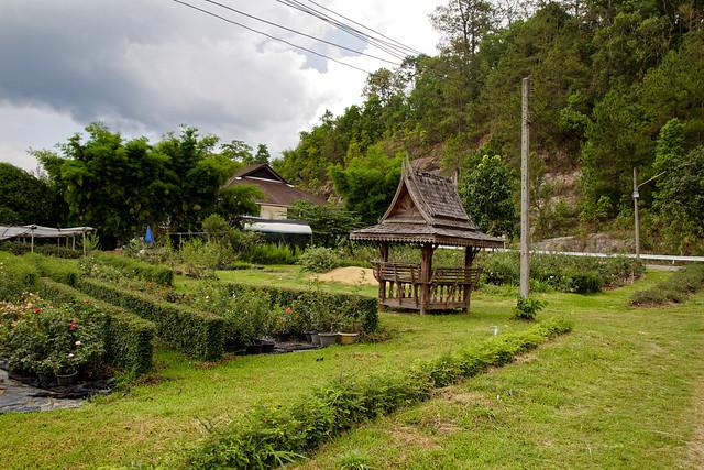 Jardin botanique de la reine Sirikit (133 sur 138)