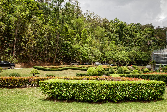 Jardin botanique de la reine Sirikit (124 sur 138)