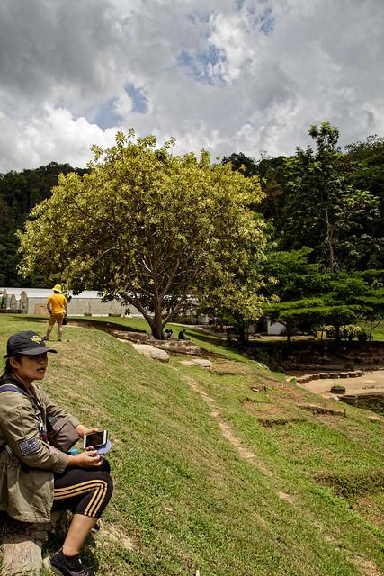Jardin botanique de la reine Sirikit (123 sur 138)