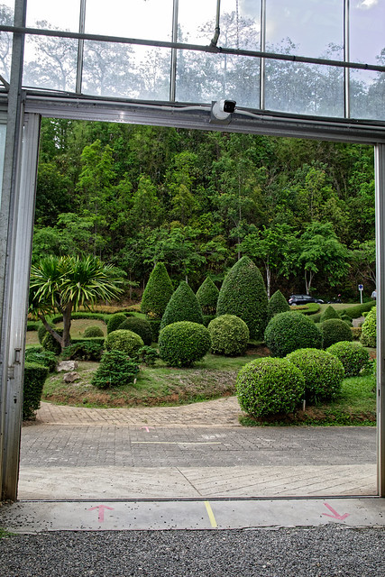 Jardin botanique de la reine Sirikit (106 sur 138)