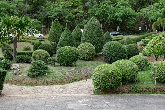 Jardin botanique de la reine Sirikit (104 sur 138)