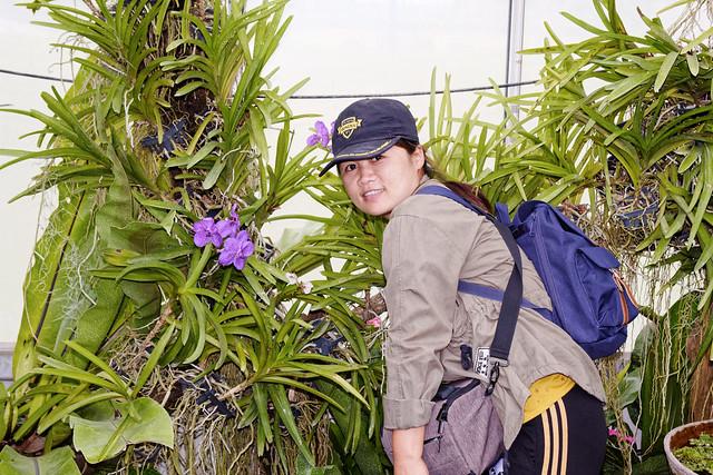 Jardin botanique de la reine Sirikit (100 sur 138)