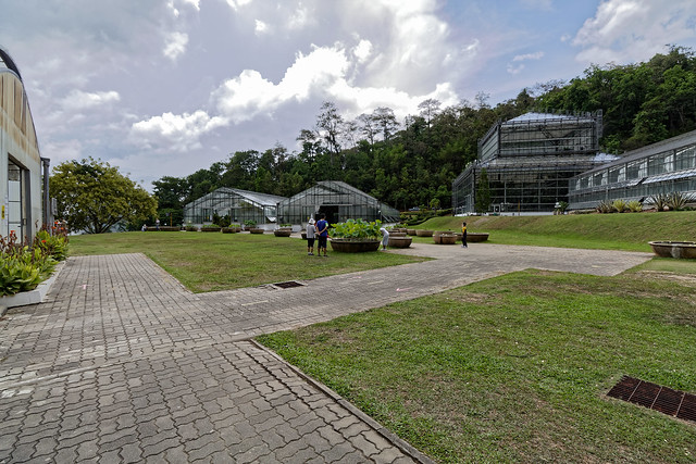 Jardin botanique de la reine Sirikit (87 sur 138)