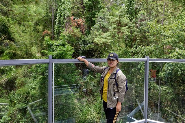 Jardin botanique de la reine Sirikit (14 sur 138)