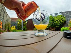 The Afternoon Tipple - A Can of Lucky Jack Norwegian Grapefruit  Beer (Olympus OM-D EM1.2 & M.Zuiko 8mm Fisheye Prime) (1 of 1)