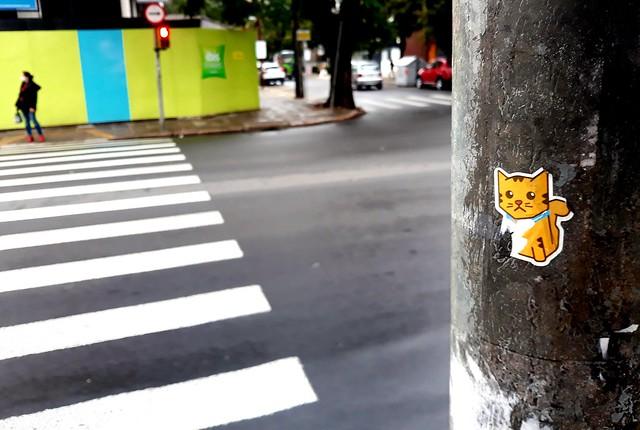 O gato triste no poste e a pessoa no outro lado da rua.