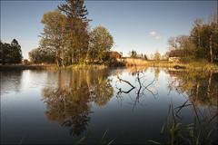 20200518. Matsalu manor park. 5602-2.