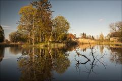 20200518. Matsalu manor park. 5593-1.