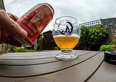 Pouring The Lucky Jack Norwegian Fruit Beer (Olympus OM-D EM1.2 & M.Zuiko 8mm Fisheye Prime) (1 of 1)
